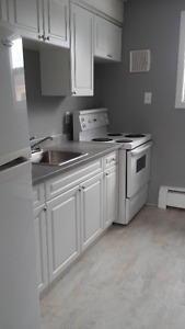 Renovated 2 Bedroom Apartment in Huron Heights