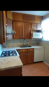 Walk to riverside 3 bedroom apt. utilities WIFi included