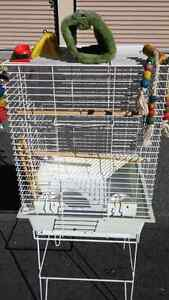 Bird cage and supplies