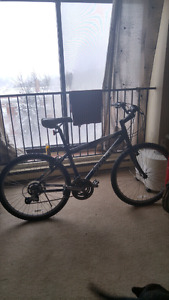 Boulder Giant Mountain Bike