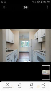 Looking for roommate to split apartment. Clayton park