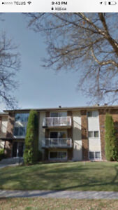 1 MONTH FREE RENT Renovated 1 bedroom Apartment Suite St Albert