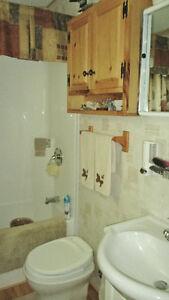12' x 39' Northlander Cottager Escape with large covered Deck Belleville Belleville Area image 9