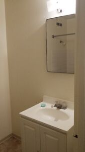 1 bedroom, furnished, SHORT term rent, $1500, Utility, WIFI incl