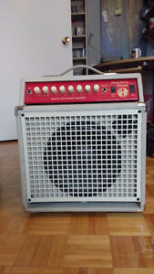 SWR Strawberry Blonde Acoustic Combo Amp 450$