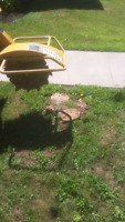 Chainsaw , tree removal stump removal