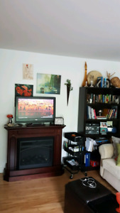 Fire Place Electric Heater and Two Large Bookcases