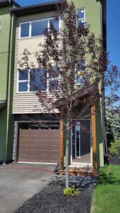 Very upscale 2 Bedroom/2.5 Bath Townhouse in Airdrie with 1