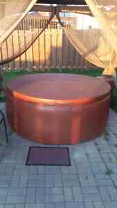 FS or Trade: 6 man Softub 300 in excellent condition