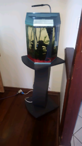Fish tank and stand Ingle Farm Salisbury Area Preview