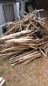 Great Bon Fire Wood