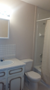 3 Rooms for rent in newly renovated homes near sault college!