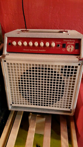SWR strawberry blonde acoustic amp