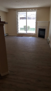 recently renovated 2 bedroom apartment with under ground parking