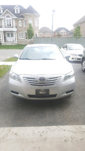 2009 toyota Camry LE CLEAN