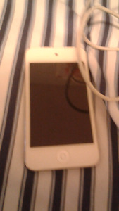 Ipod Touch 4th Gen With Charger