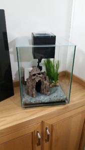 Fluval Chi fish tank with fountain filter