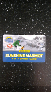 Sunshine marmot card