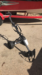 Electric golf cart - never used