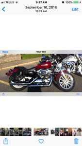 2006 1200 Harley Sportster