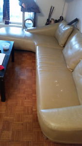 Sectional Sofa.  FREE