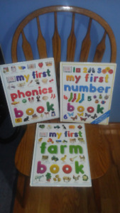 3 Oversized Childrens Educational Books