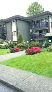 Spacious, Top Floor Studio - Dec. 1st, 2016 North Shore Greater Vancouver Area image 1