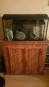 33 and 15 gallon aquariums with stands
