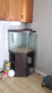45 gallon corner tank, stand$170 OBO