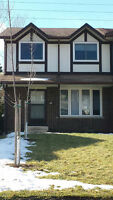 Student Rental 1 Bedroom Available - Newly Renovated home