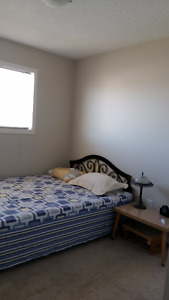 Harbour Landing    two bedrooms for rent