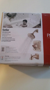 Pfister shower head and faucet