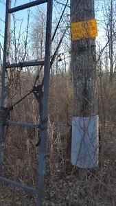 Double tree stand for 2 have 2 of them Regina Regina Area image 3