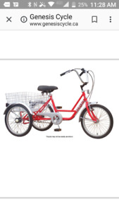 3 wheeler bike with carriage for sale (almost new) $395