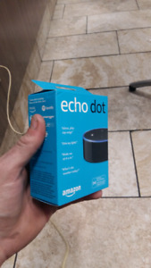 Echo Dot Home System