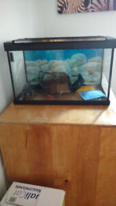 10 Gallon Tank with lid, light and filter.
