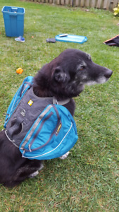Ruffwear Pallisades Dog Backpack