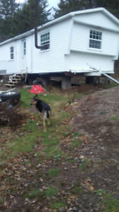 One Acre Lot In Hillsdale