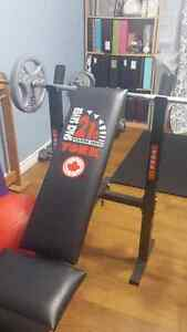 workout bench (youth) London Ontario image 6