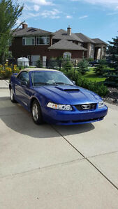 FORD MUSTANG CONVERTIBLE FOR SALE, WANTED,LOOKING