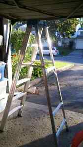REDUCED 6 FT LADDER
