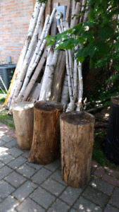 Live Edge Wood-  Branches, Slabs, Stumps, Logs, Discs, Cookies