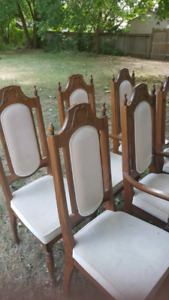 5 plus 1 dining room chairs