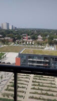 FURNISHED BRAND NEW 1-BEDROOM CONDO;SHORT/LONG TERM