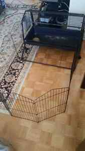 8 month old rabbit or small animal cage