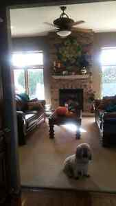Like New- Coffee Table and Back Side Tables Windsor Region Ontario image 1