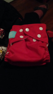 33 Cloth Diaper + extras