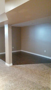 Two rooms in executive house basement for rent for short term