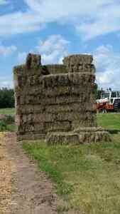 Fresh dry hay bales