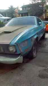 1973 Project Mustang